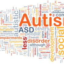 Recent Developments in Autism Research